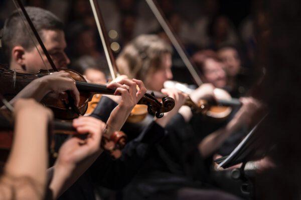 Het orkest